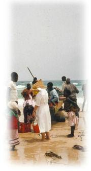 Sénégal ... travail